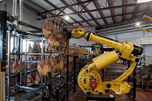 Tot el cicle de Grup Alimentari Guissona està certificat amb l'ISO 9000 i l'ISO 22000, que són garanties de qualitat i seguretat alimentàries. També disposa de l'ISO 14000 per a temes mediambientals i l'OHSAS 18001 de prevenció de riscos laborals.